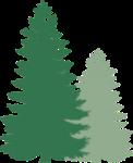 SHEHOA logo
